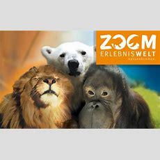 Zoom Erlebniswelt  Reduzierte Eintrittspreise Zur