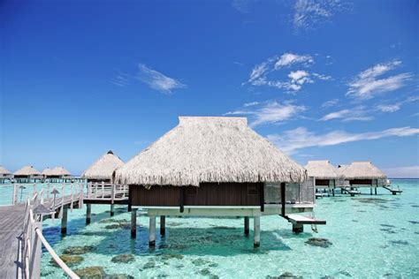 Hilton Moorea Lagoon Resort And Spa Accommodation Tahiti