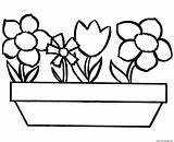 Coloring Simple Flowers Pages Printable sketch template