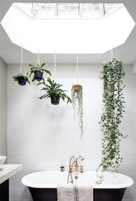 bathroom bathroomdecorideas plants