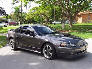 2003 Mustang Parts & Accessories | AmericanMuscle.com - Free Shipping!