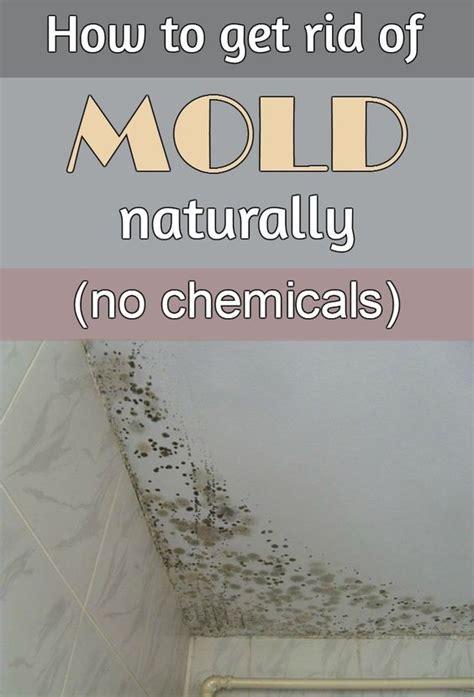 How To Get Rid Of Mildew In Bathroom Ceiling  Get Rid Of