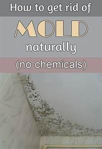 how to get rid of mold naturally without chemicals With how to get rid of bathroom mildew