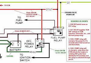 5 0 Swap    Conversion Fuel Pump Wiring Question