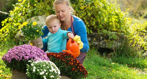 Garten Pflanzen Im Herbst by Dekoideen Fuer Den Garten Im Herbst So Gestalte Ich Meinen