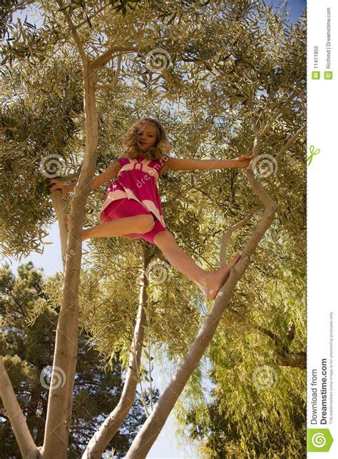 blonde girl climbing high   tree stock image image