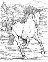 Horse Coloring Pages Detailed Printable Getcolorings sketch template