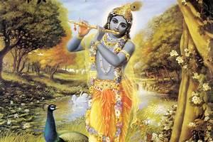 Krishna Flute Wallpaper for Decor