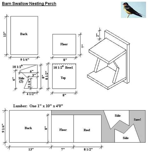 plans barn swallow bird house build nest inon barn swallows build mud