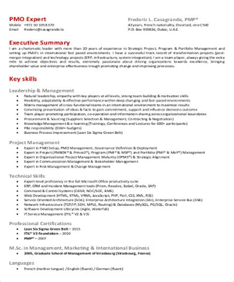 Executive Resume Summary Sle by Project Management Resume Executive Summary 28 Images