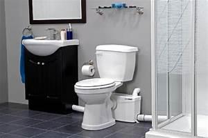 Saniflo toilets aaron plumbing for Basement toilet