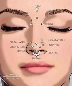 The Piercing Dictionary  Nose Piercings  U2013 Bodycandy