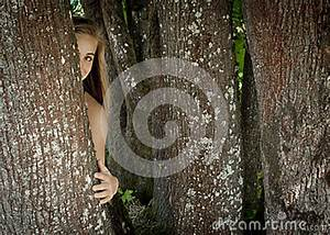 Girl Hiding Behind A Tree Royalty Free Stock Images ...