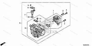 Honda Motorcycle 2016 Oem Parts Diagram For Throttle Body