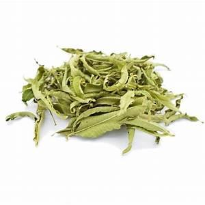 Verveine Plante Tisane : tisane de verveine odorante bio lippia citriodora feuilles en vrac ~ Mglfilm.com Idées de Décoration
