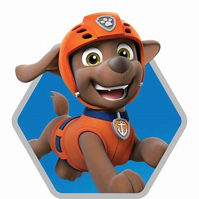 Paw Patrol Zuma Race Rescue Characters Character
