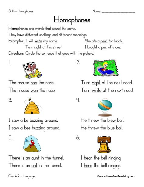 homophones worksheets teaching