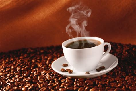 how hot coffee the truth about the hot coffee case oatley vigmond