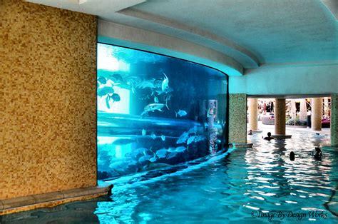 shark tank pool  explored view  black  golden
