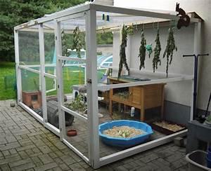 Terrassendielen Reinigen Hausmittel : freilaufgehege kaninchen selber bauen freigehege freilaufgehege kaninchen meerschweinchen ~ Watch28wear.com Haus und Dekorationen