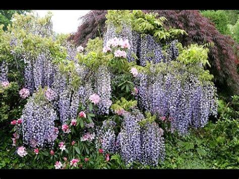 Comment RÉaliser Un Mini Jardin De ConifÈres Bijoux Doovi