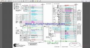 Cummins Qsc Wiring Diagram Manual