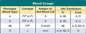 Blood Inheritance Chart Cosbiology 10 03 Human Inheritance