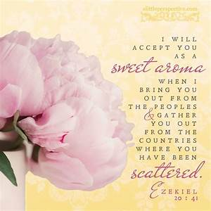 """""""I will ac... Sweet Aroma Quotes"""