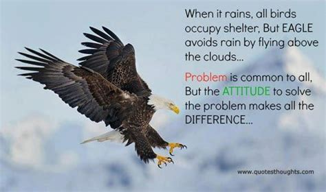 eagles inspirational quotes quotes on eagle http www