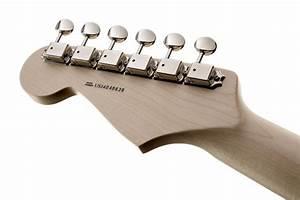 Eric Clapton Strat Wiring Diagram Guitar