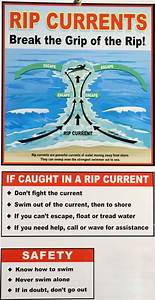 Hawaii Beach Safety Tips