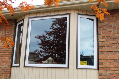 Bay And Bow Windows Installation And Replacement Vinyl