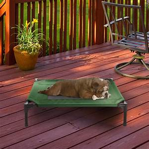 Elevated, Pet, Bed, Non