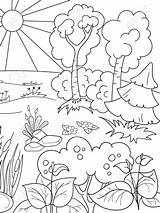 Forest Coloring Bamboo Morning Nature Rainforest Printable Both Cartoon Plants sketch template