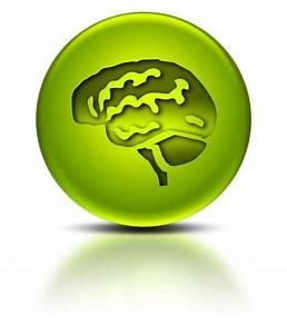Brain Icon #063637 » Icons Etc
