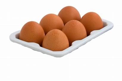 Eggs Dozen Local Farm