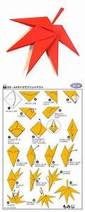 Best 25  Origami Step By Step Ideas On Pinterest