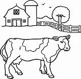Coloring Cow Printable Sheets sketch template