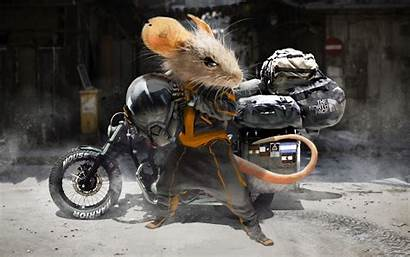 Motorcycle Mouse Motorcyclist Helmet Background Widescreen