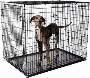 frisco xx large heavy duty double door dog crate 54 in With dog crate cost