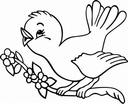 Coloring Bird Pages