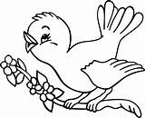 Coloring Bird Pages sketch template