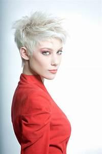 Coupe Courte Femme Cheveux Gris : faites ressortir votre douceur et force f minine en osant ~ Melissatoandfro.com Idées de Décoration