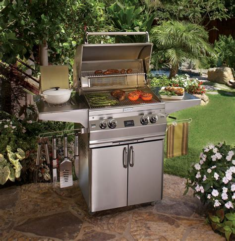 barbecue appliances portable grills gallery flame