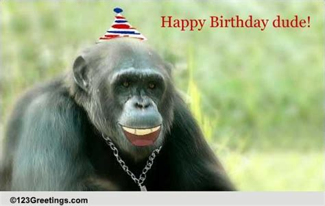 happy birthday dude   son daughter ecards greeting cards