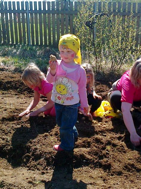 outdoor activities preschool outdoor activities at preschool outdoor learning in the 350