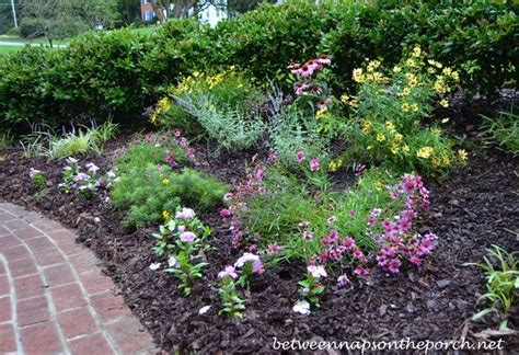 small perennials create a small sun loving perennial garden