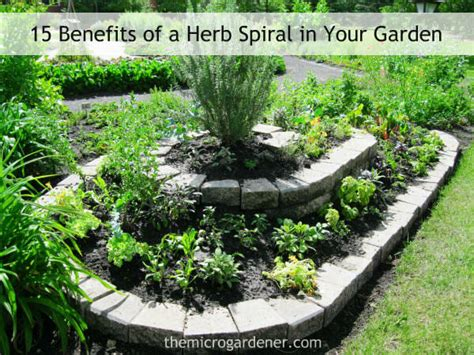 15 Benefits Of A Herb Spiral In Your Garden