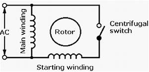 techelectrical india single phase induction motor and With wiring diagram split phase capacitor start induction motor 3 phase 2