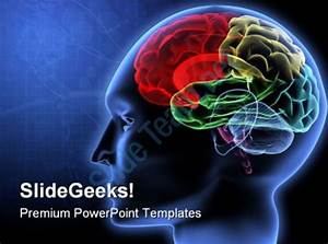brain powerpoint templates fitfloptwinfo With brain powerpoint templates free download